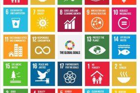 Les objectifs de développement soutenable