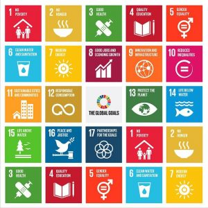 The 17 goals of sustainable development