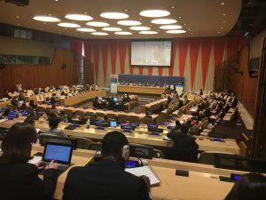 Segmento de integración ECOSOC 2017