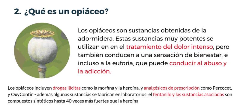 Qué es un opiaceo?