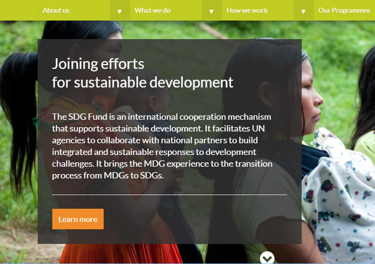 SDG-F web site screen capture