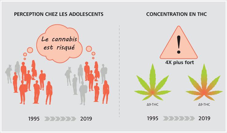 Perception du risque lié au cannabis chez les ados