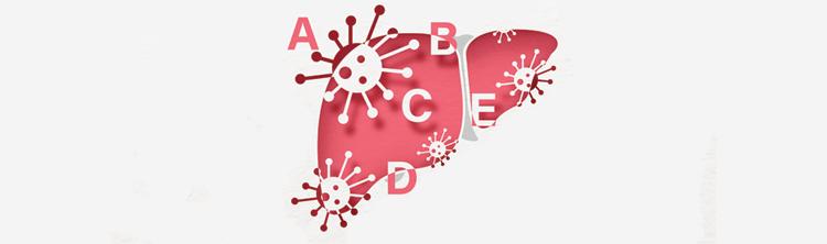Different hepatitis